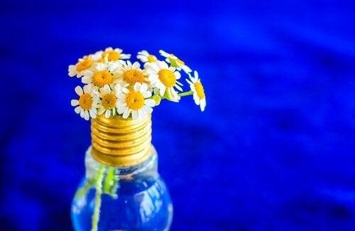 Decore com flores algum objeto reciclado