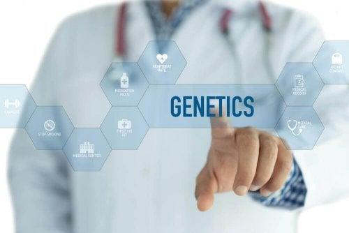 Descubra quem é o culpado pela obesidade: a genética