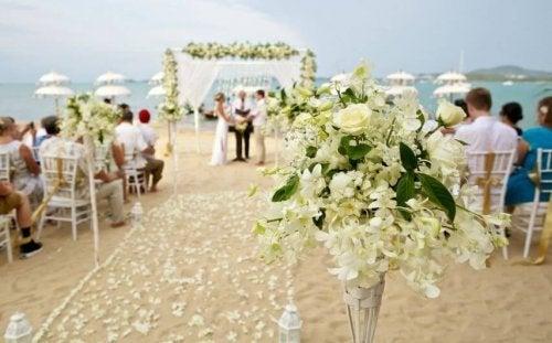 Formas de economizar no casamento: biscar preços nas flores