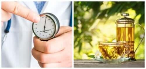 5 ervas para combater a hipertensão