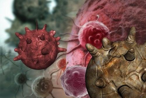 Mitos sobre os alimentos cancerígenos