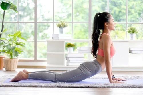 O que é a flexibilidade e quais as vantagens que ela oferece?