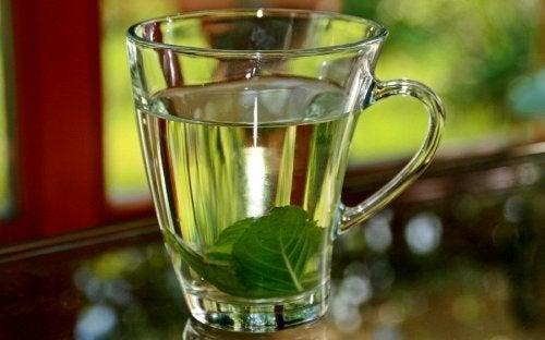 Chá de manjericão para controlar a febre