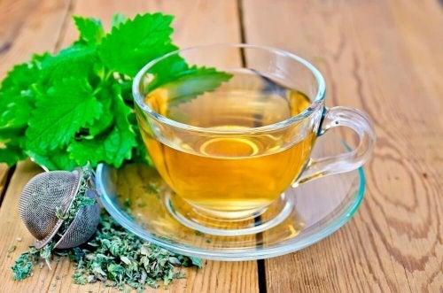 Chá de melissa contra o estresse