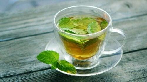 Propriedades do chá de hortelã para a saúde