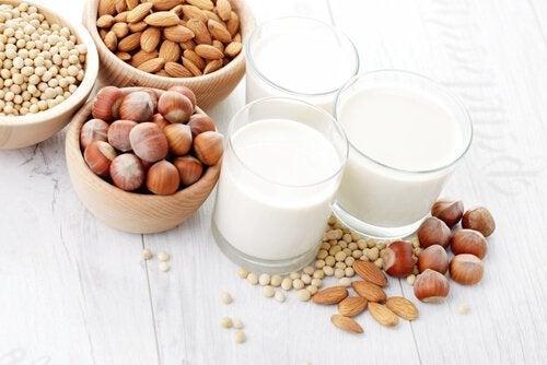 Receitas de leites vegetais para o lanche