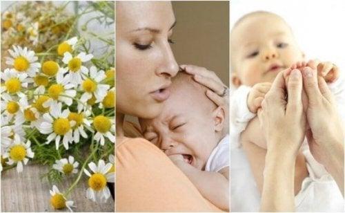 Cólicas em bebês: confira os 5 remédios naturais