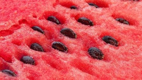 Cataplasma de melancia