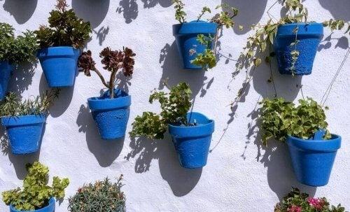 Aprenda a decorar seus vasos de plantas
