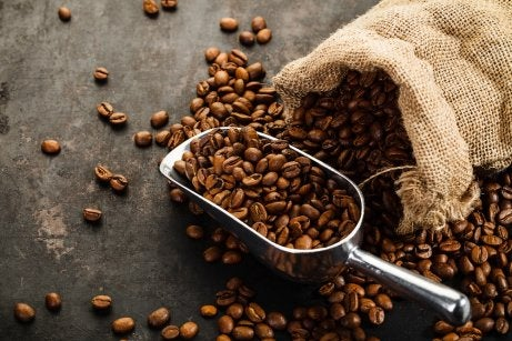 Purificador natural de café