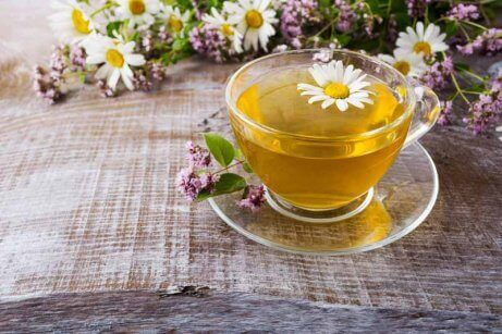 Chá de camomila que auxilia o tratamento da gastrite