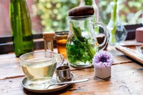 Alimentos e remédios para fortalecer o sistema imunológico