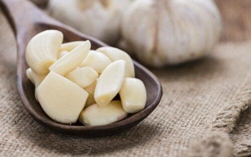 Alimentos para fortalecer o sistema imunológico