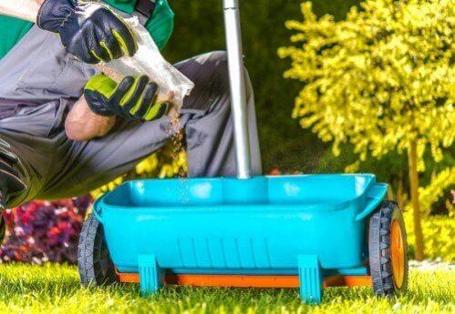 Dicas de jardinagem para nutrir as plantas naturalmente