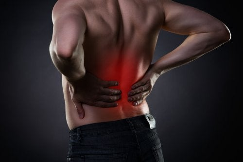 8 hábitos complementares ao tratamento da dor lombar