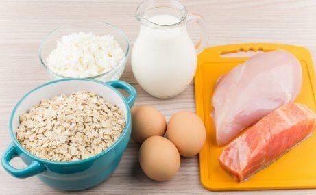 Consuma mais proteína