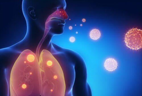 3 infusões para aliviar os sintomas da gripe