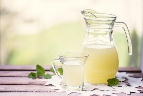 Soro do leite: benefícios e alternativas a ele