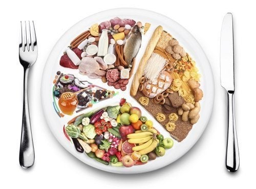 Proporção de comida em um prato