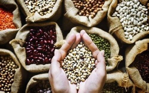 Sementes para dieta vegana