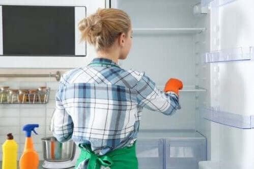 Limpeza e desinfecção ecológicas da geladeira
