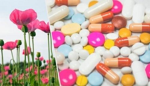 Uso dos opioides