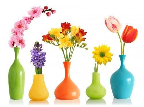Renove seus vasos com cores diferentes.