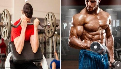 Curl para definir seus músculos rapidamente