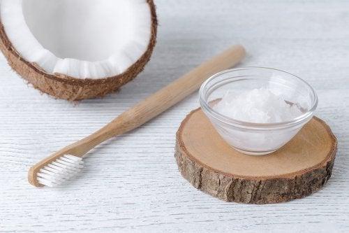 Óleo de coco para combater a gengivite