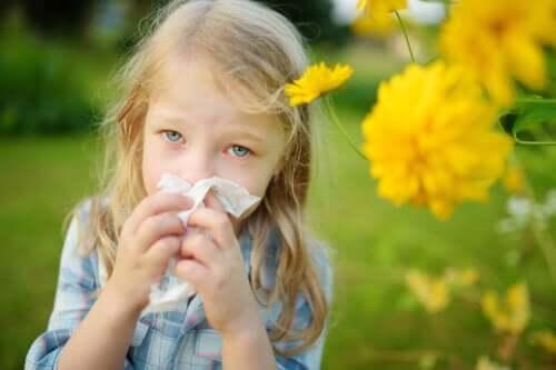 5 remédios de ervas para combater a rinite alérgica