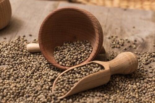 Shake proteico com sementes de cânhamo