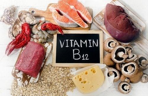Alimentos com vitamina B12
