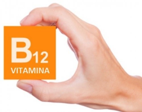A deficiência de vitamina B12 pode provocar acidemia metilmalônica