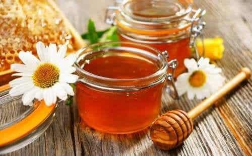 6 adoçantes naturais para substituir o açúcar refinado