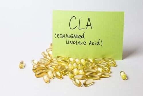 Ácido Linoleico Conjugado (LAC): efeitos no organismo