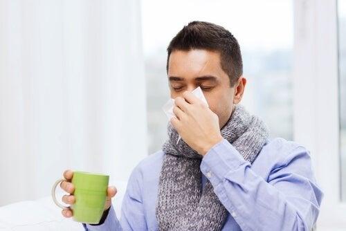 As infusões ajudam a aliviar gripes e resfriados