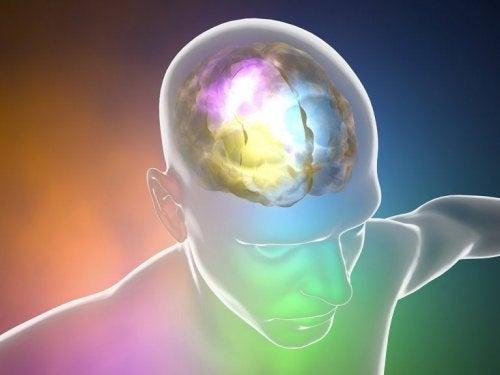 O excesso de sódio pode alterar o cérebro