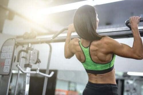 Exercícios para ganhar músculo e força