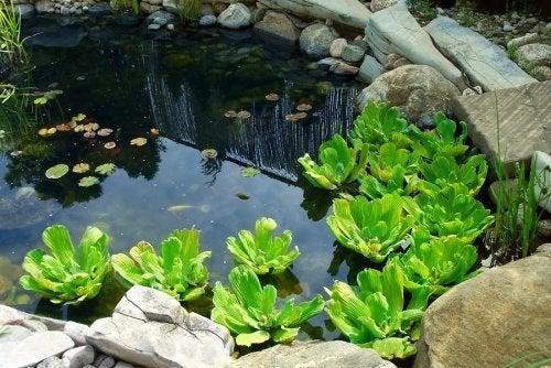 3 maneiras diferentes de ter um lago artificial em casa