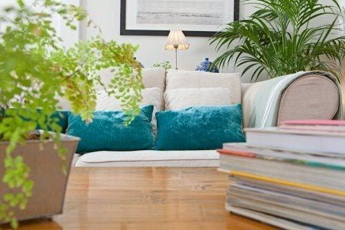 4 plantas para um design de interiores contemporâneo
