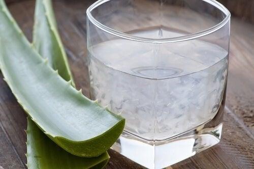 Aloe para superar a constipação