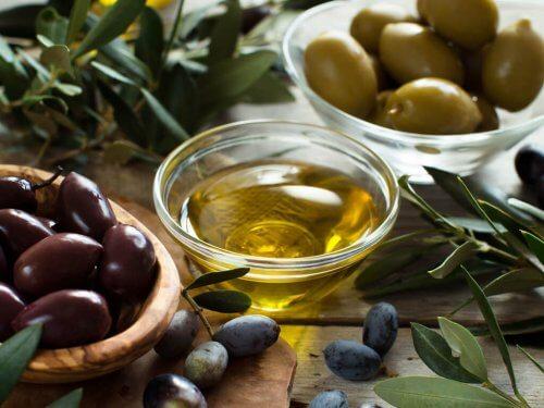 Azeite de oliva e azeitonas fornecem bactérias bnéficas