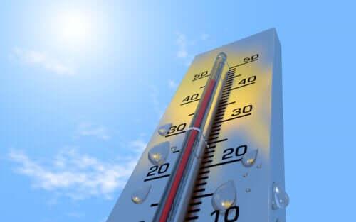 6 efeitos do calor sobre o organismo