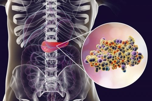 Efeitos da insulina no pâncreas