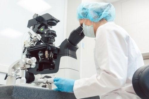 O diagnóstico genético pré-implantacional
