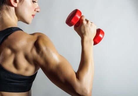 Mulher fortalecendo o bíceps
