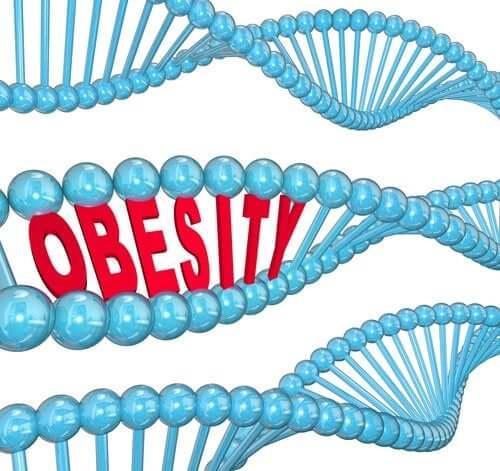 O gene da obesidade de acordo com a ciência