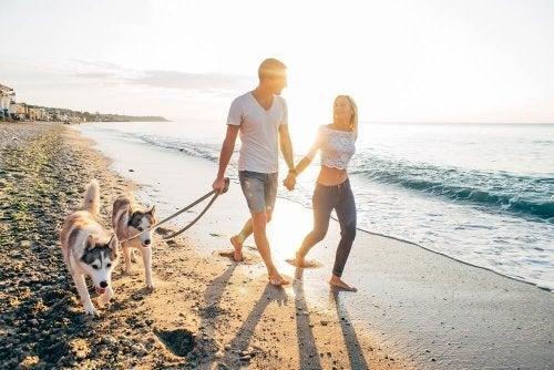 Os animais de estimação trazem grandes benefícios à família