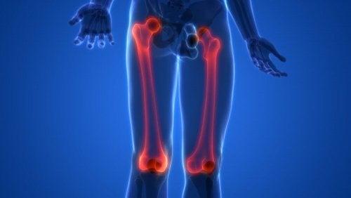 Imagem dos ossos dos membros inferiores