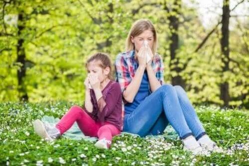 As melhores dicas contra alergias respiratórias
